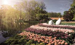 Reader offer: See Holland in bloom with TV's Adam Frost