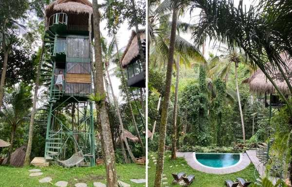 I stayed at a tree house in Bali, and the incredible experience costs under $35 per night