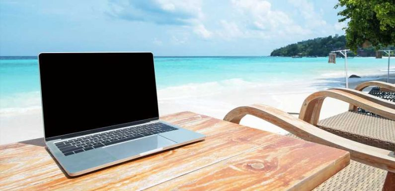 Win a Free Roundtrip Flight to Hawaii and Work Remotely for a Month — How to Apply