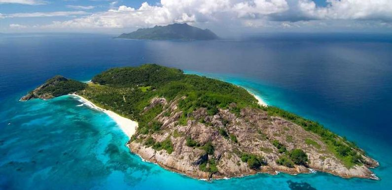 A Massive Reforestation Initiative Is Under Way in Seychelles