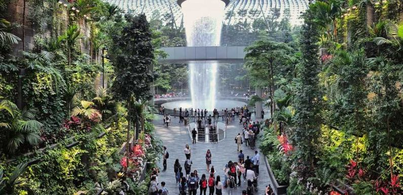 You Can Go Glamping in Singapore's Over-the-top Jewel Changi Airport