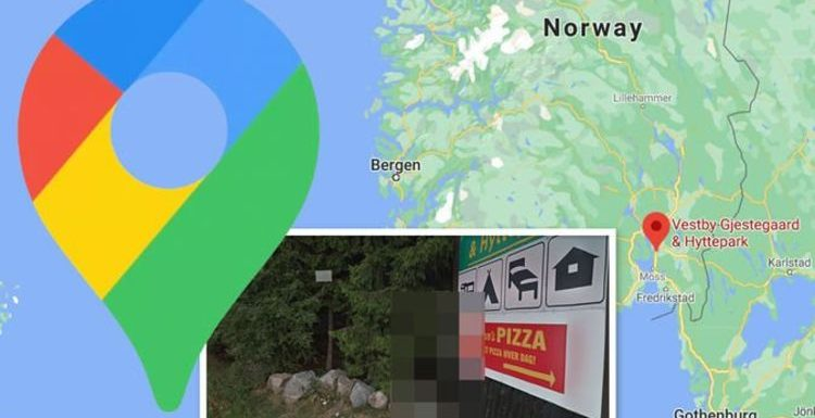 Google Maps Street View: Half-naked man spotted in Norwegian forest – what's he up to?