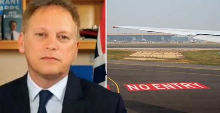 Grant Shapps warns of danger in closing borders – 'no point' as 'it won't stop the virus'