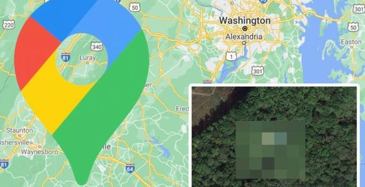 Google Maps: Mysterious plane 'crash' spotted among woods in USA in 'weird' photo