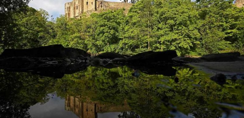 Why Barnard Castle is so much more than a Twitter punchline #hometowns