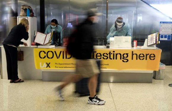 Requiring a COVID Vaccine for Travel Is Discriminatory, Tourism Group Says
