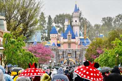 What Will a Million Distraught Disneyland Superfans Do Now That the Annual Pass Is Dead?
