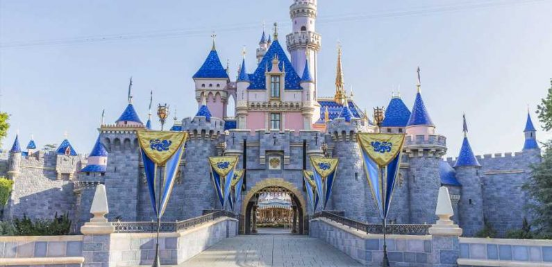 Now That Disneyland Canceled Annual Passes, What's Next? We Answer Your Questions