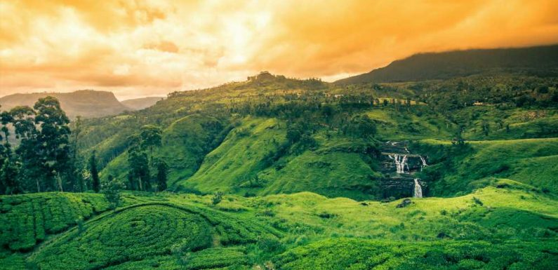 Sri Lanka Reopens to International Travelers After 10 Months Shut
