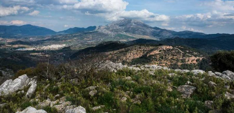 Spain Is Getting a New National Park — and It's Home to Incredible Wildlife, Hiking, Kayaking, and More