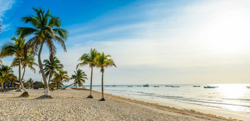 Guide to booking American Airlines Vacations packages