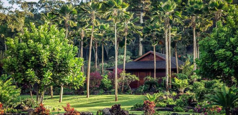 This Hawaiian Wellness Retreat Is Offering 30-day Extended Stays for Those Who Need a Reset