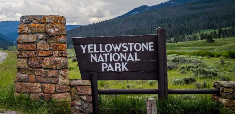 Man Searching for Treasure Faces 12 Years in Prison for Digging Up Graves at Yellowstone