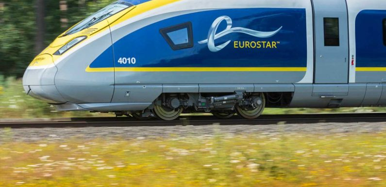 Expect 'arm-wrestling' between London and Paris to rescue Eurostar, says top economist