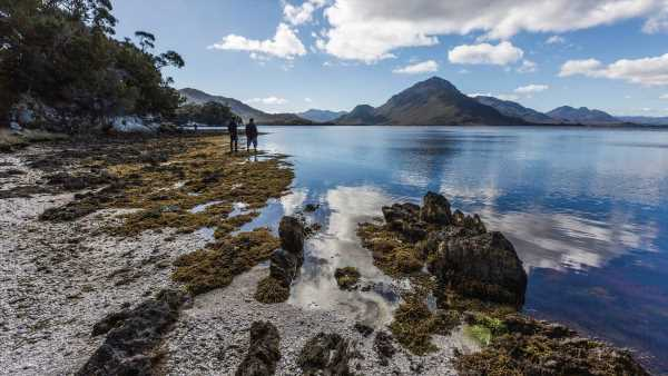 Tasmania ready to welcome first direct NZ flights for 20 years