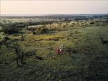 A Multi-Day Walking Safari Is the Best Way to See Kenya's Wildlife
