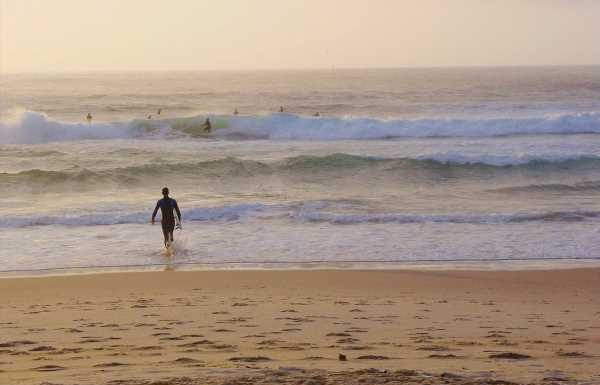 Could Australia open for vaccinated tourists in 2022?