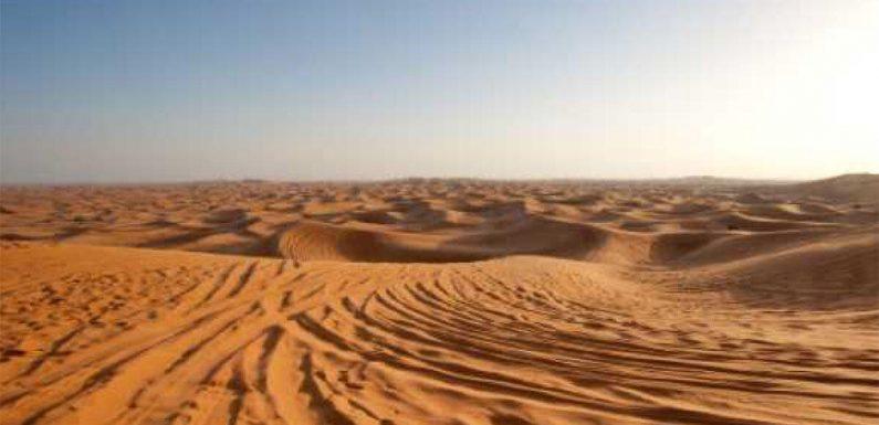 Dubai desert camp shut down, operator fined over virus violations
