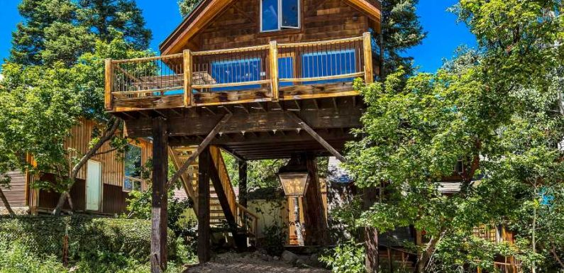 This Luxurious Tree House in Park City Is the Most Wish-listed Airbnb in Utah