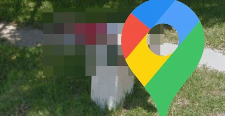 Google Maps Street View: Man adopts bizarre position in garden scene