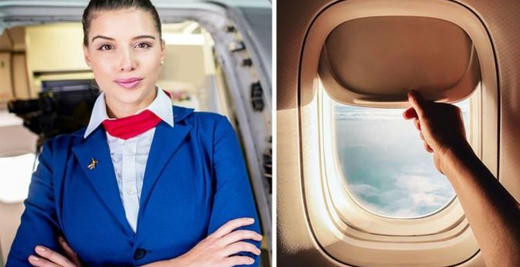 Cabin crew secrets: Flight attendant shares importance of keeping window blinds up