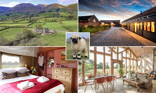 These British farms offer the perfect escape to the country