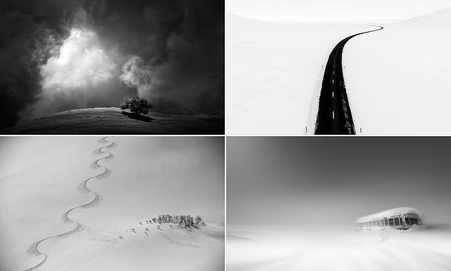 The winning images in a black and white minimalist photography contest