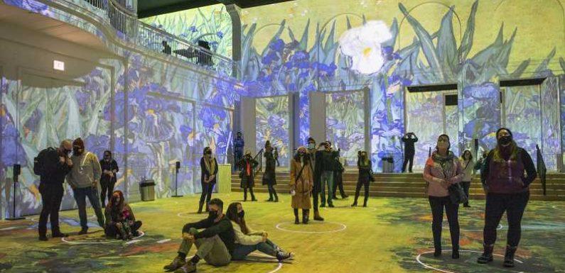 Immersive Van Gogh Digital Art Shows Coming to 13 U.S. Cities