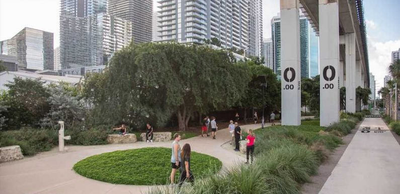 Miami Is Creating a Gorgeous New Park Underneath Its Downtown Rail Lines