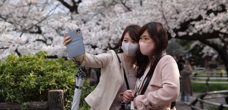 Japan Becomes Latest Country to Issue Digital Vaccine Passport