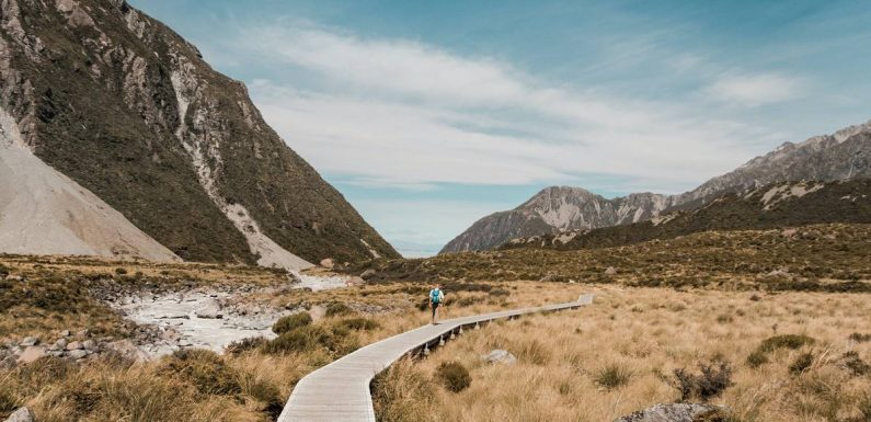 Travel Well: What is mindful hiking? Walking for wellbeing boost