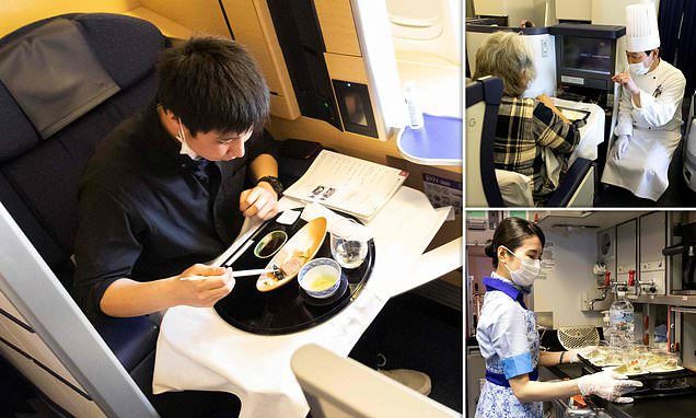 Japan's All Nippon Airways offers £390 meals on parked planes