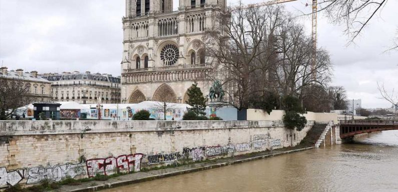 Notre Dame Cathedral's Reconstruction Could Take up to 20 Years, Rector Says