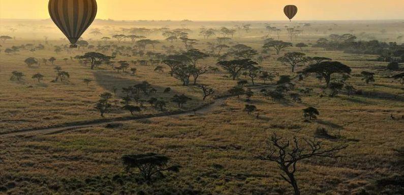 10 Incredible National Parks in Africa – From Vast Deserts to Rain Forests and Mountains