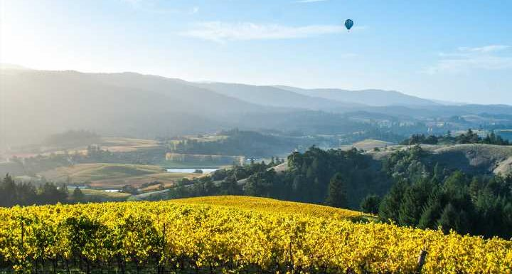 How to Take a Food- and Wine-Centric Road Trip Along California's Highway 128