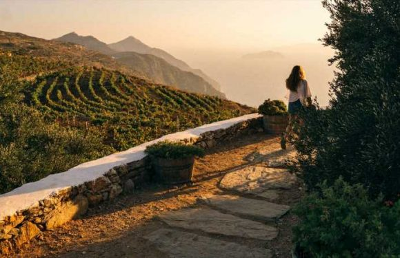 A Tasting Tour of the Greek Islands' Best Natural Wineries