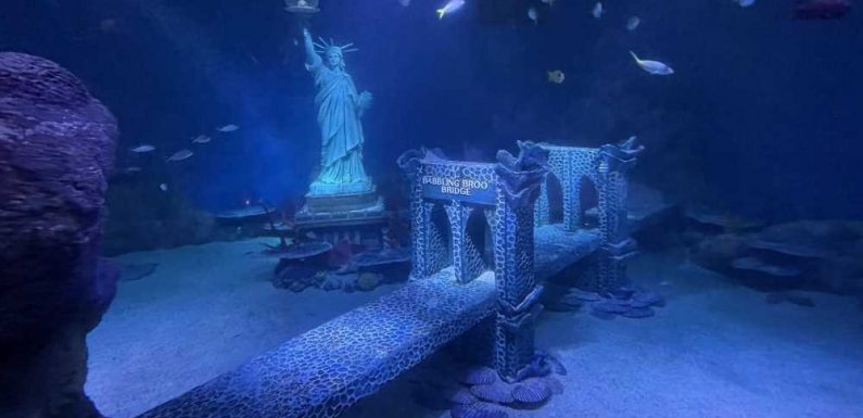 An Interactive, NYC-themed Aquarium Is Opening This Week in the American Dream Complex – and We Got a Sneak Peek