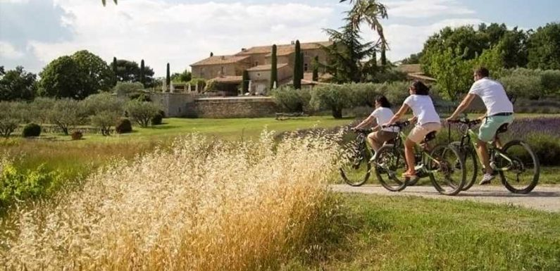 Cycle Across France While Learning About Wine on This Ultra-luxe Tour