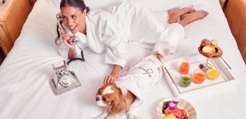 Encore Las Vegas will pamper your dog