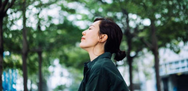 I Live in a Busy City but Take Calming 'Nature Walks' Thanks to This Meditation App