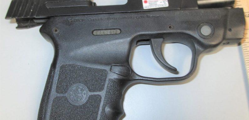 Man arrested in Pennsylvania after TSA finds loaded handgun in baby stroller