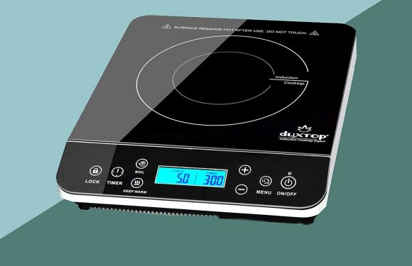 The 10 Best Portable Induction Cooktops for Camping and Travel