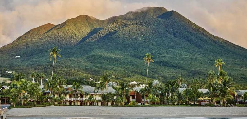 This Luxury Caribbean Resort Has a Sea Turtle Summer Camp Perfect for Families