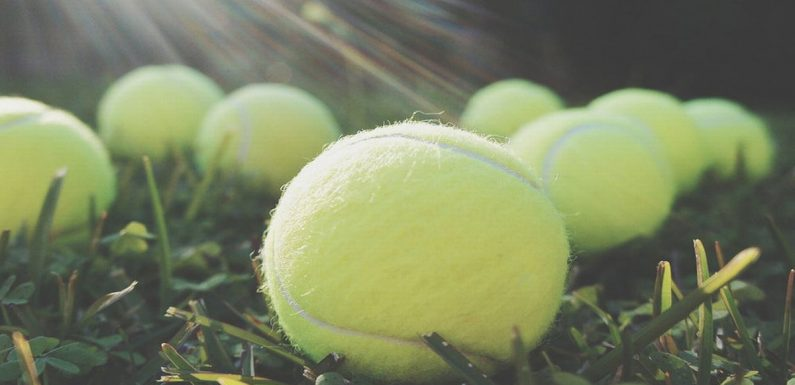 This is why you should always take a tennis ball on your flight
