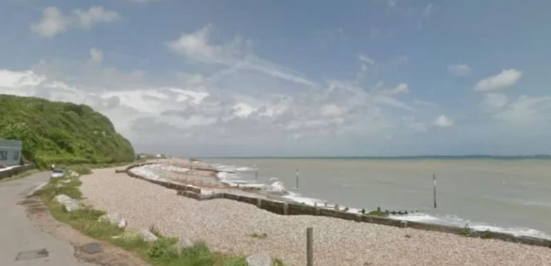 White Cliffs of Dover beach on sale, with bids starting at $1.80
