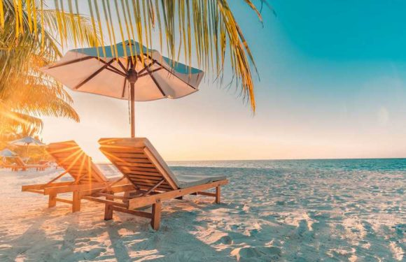 American Express Travel: Bookings at 95% of 2019 levels