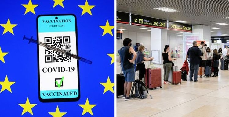 EU vaccine passport chaos as airport time increases by 500% – 'total lack of coordination'