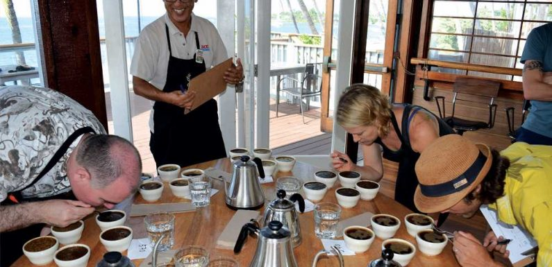 A trimmed-down Kona Coffee Festival returns in November