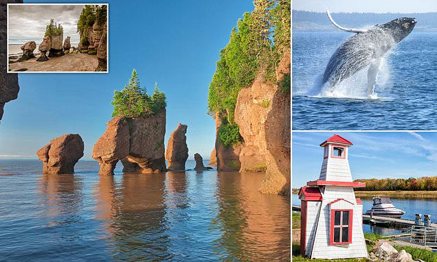 Crazy about Canada! Head to the wonder that is the Bay of Fundy
