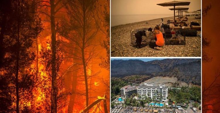 Greece holiday warning as 'apocalyptic' fires ravage nation – 'travel disruption' likely